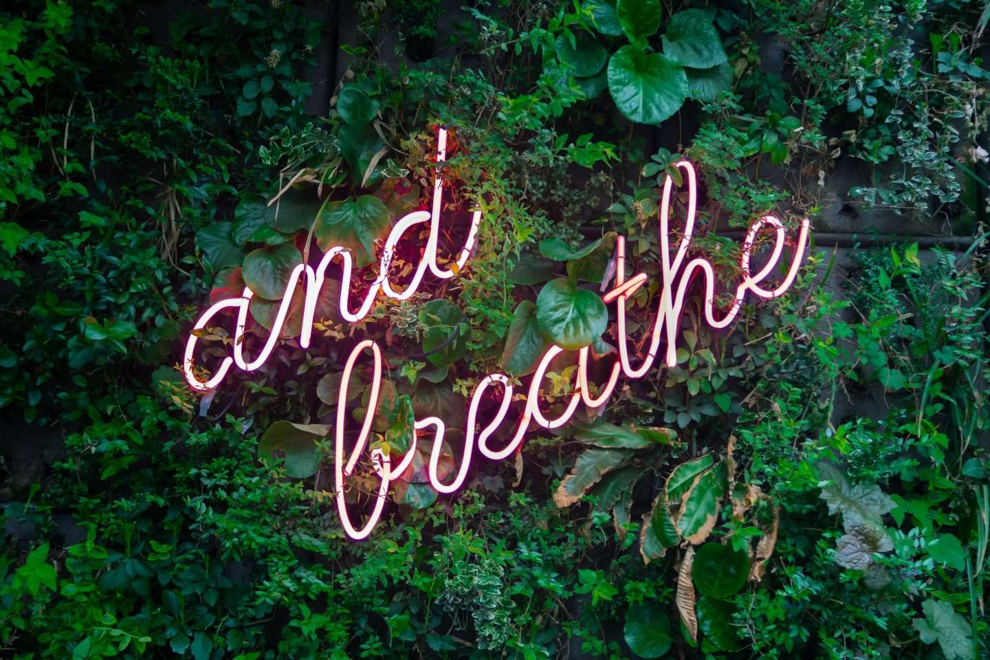 Neon Sign saying 'and breathe'