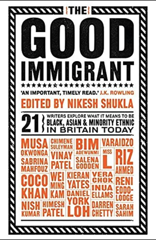 The good Immigrant book