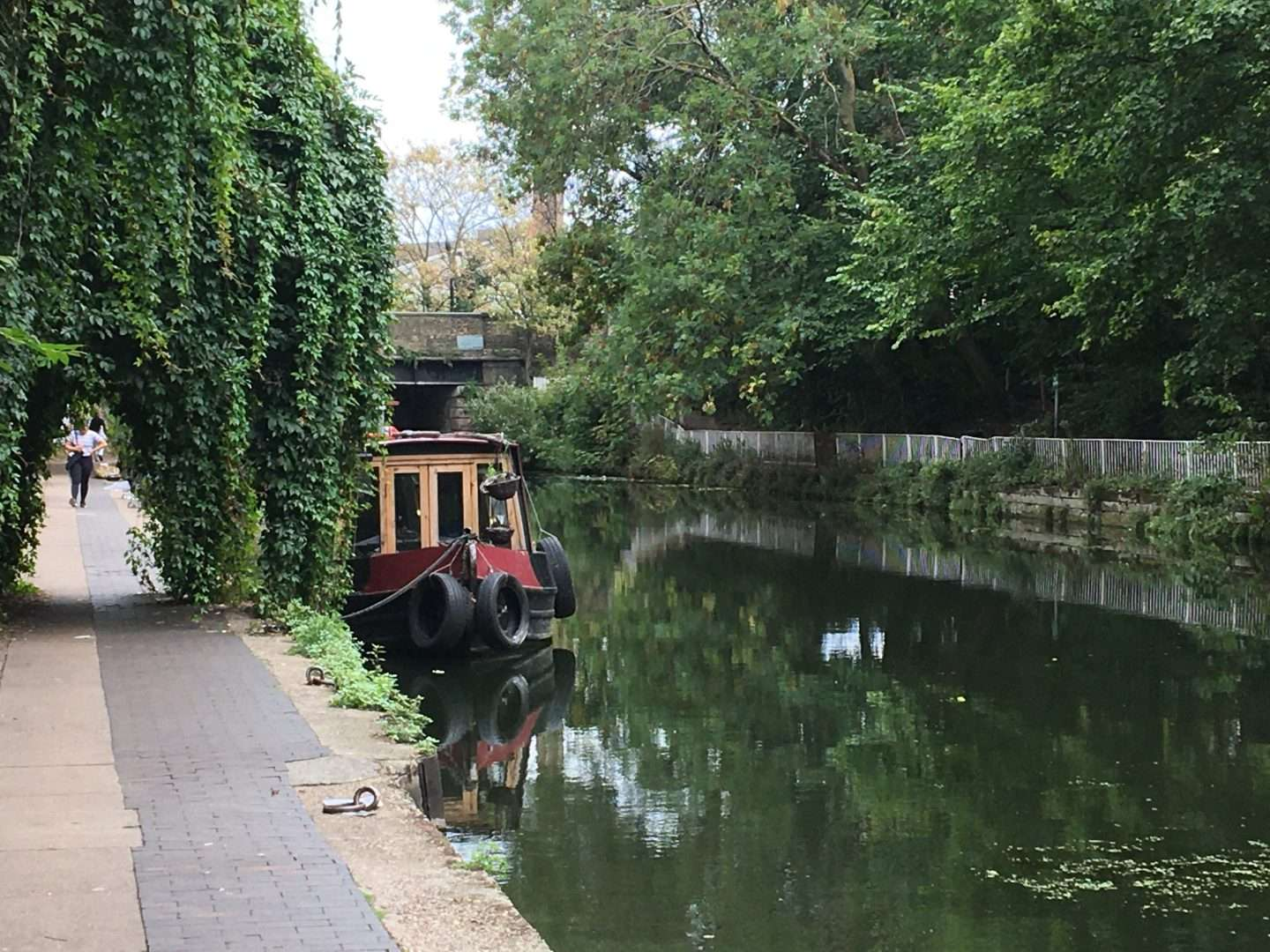 greenery on canal